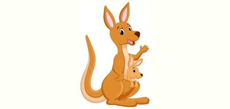 نتيجة بحث الصور عن kangaroo4u
